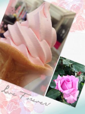 薔薇ソフト.PNG